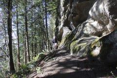 El hombre camina en rastro de montaña Imagen de archivo libre de regalías