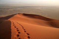Un rastro en la duna Fotografía de archivo libre de regalías