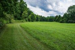 Un rastro que camina a través de un prado Imagen de archivo libre de regalías