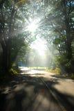 Un rayo de esperanza. foto de archivo