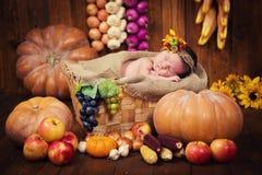 Un recién nacido lindo en una guirnalda de bayas y de frutas duerme en una cesta Autumn Harvest Foto de archivo libre de regalías