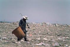 Recogedor de la basura de Ciudad de México Imagenes de archivo