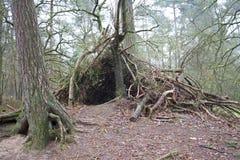 Un refugio hecho de la madera en bosque Fotos de archivo