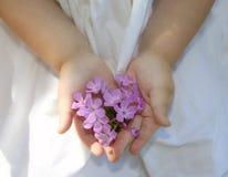 Un regalo de mi jardín Foto de archivo libre de regalías
