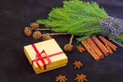 un regalo de Navidad precioso Imagen de archivo