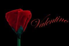 Un regalo per il biglietto di S. Valentino Fotografia Stock