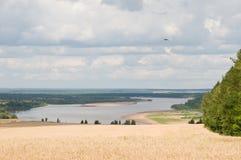 Un regard au-dessus du fleuve Image libre de droits