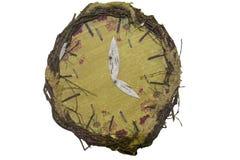 Un reloj análogo de ramas Fotos de archivo libres de regalías