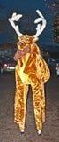 Un reno en los zancos Imagen de archivo