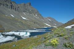 Un resorte está en montañas Foto de archivo libre de regalías