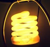 Un resplandor de medianoche caliente Fotografía de archivo libre de regalías