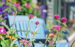 Un resto in un giardino floreale Fotografia Stock