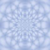 Un reticolo di fiore Fotografia Stock