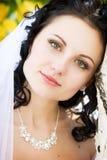Un retrato de la novia de pensamiento Fotografía de archivo