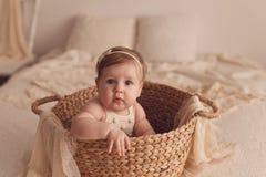 Un retrato de una vieja muchacha de seis meses que se sienta en una cesta de mimbre imagen de archivo