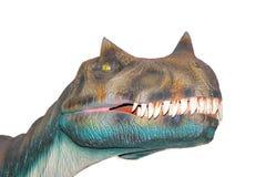 Un rex aislado asustadizo de los dinosaurios T de Dino Foto de archivo libre de regalías