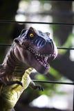 Un rex de tyrannosaure Image libre de droits