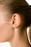 Un ritratto del primo piano di un orecchio e di un collo femminili immagine stock libera da diritti