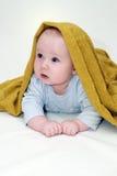 Un ritratto di cinque mesi del neonato del dolce Fotografia Stock Libera da Diritti