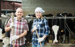Un ritratto di due agricoltori si avvicina al granaio di mucche Fotografie Stock Libere da Diritti