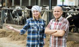 Un ritratto di due agricoltori si avvicina al granaio di mucche Fotografia Stock Libera da Diritti