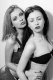 Un ritratto di due bei giovani romantici sexy Fotografia Stock Libera da Diritti