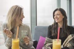 Un ritratto di due giovani belle donne alla caffetteria, conversazione della ragazza Fotografia Stock Libera da Diritti