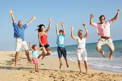 Un ritratto di una famiglia delle tre generazioni sulla spiaggia Fotografie Stock