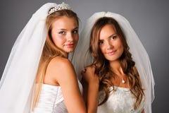 Un ritratto grazioso delle due spose in studio Fotografia Stock Libera da Diritti