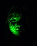 Un ritratto insolito di una bambina fatta facendo uso delle luci verde su un fondo nero Fotografia Stock Libera da Diritti