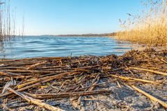 Un rivage d'un lac au crépuscule image libre de droits