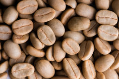 Un-roast arabica raw coffee beans. Close up Stock Photography