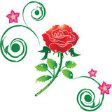 Un rojo se levantó con las decoraciones ilustración del vector
