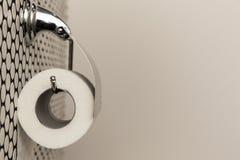 Un rouleau blanc de papier hygiénique mou accrochant d'une manière ordonnée sur un support moderne de chrome sur un mur léger de  Photographie stock