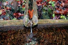 Un rubinetto di legno Fotografia Stock