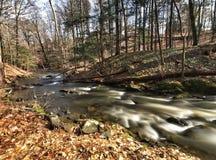 Un ruisseau de bavardage Image libre de droits