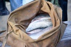 Un sac complètement des poissons frais de montagne Photo libre de droits