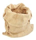 Un sacco di granulo Immagini Stock Libere da Diritti