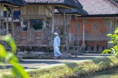 Un sacerdote hindú está preparando el ritual en el templo de Taman Ayun en Bali imagen de archivo