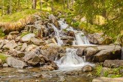 Un salto scintillante di una cascata Immagini Stock