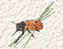 Un scarabée sur l'herbe dans l'aquarelle Photos libres de droits