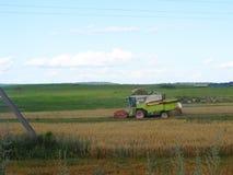 Un secadero verde de la cosecha mecanizada en campo Imagenes de archivo