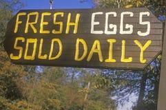 Un segno che legge le uova fresche del ½ del ¿ del ï ha venduto il ½ del ¿ del dailyï Fotografia Stock Libera da Diritti