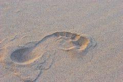 Un sello del pie Imagen de archivo