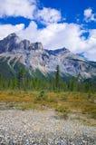 Un sentier de randonnée en Yo-ho parc national, à la montagne canadienne des Rocheuses Images stock