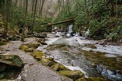 Un sentier de randonnée par peu de Stony Creek Photographie stock