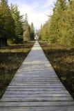Un sentiero costiero lungo ad una vecchia residenza del faro Fotografie Stock