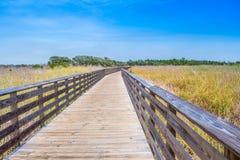 Un sentiero costiero molto lungo circondato dagli arbusti nelle rive del golfo, Alabama immagini stock