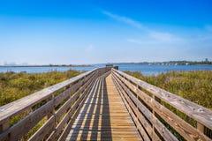 Un sentiero costiero molto lungo circondato dagli arbusti nelle rive del golfo, Alabama immagine stock libera da diritti