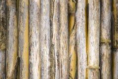 Struttura senza cuciture di bambù Immagine Stock Libera da Diritti